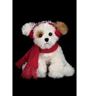 DOG/Chilly Dog