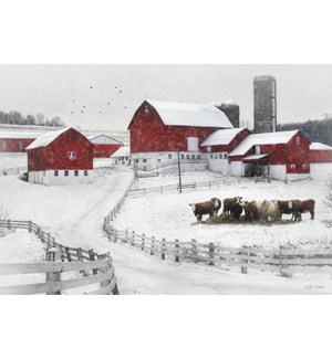BOXEDCLASSIC/Cows in snow