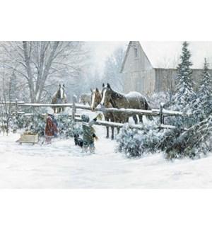BOXEDCLASSIC/Horses fence