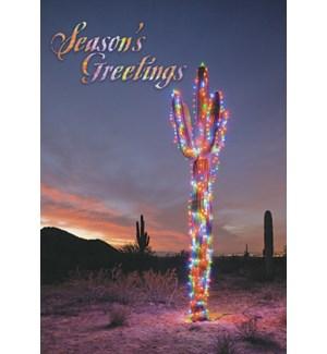 BOXEDCLASSIC/Cactus decor