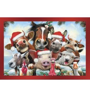 BOXEDCLASSIC/Farm animals