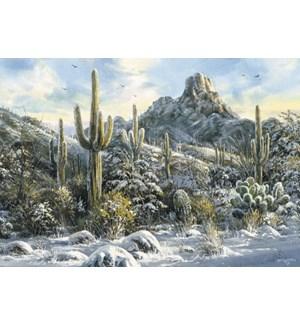 BOXEDCLASSIC/Cover cactus