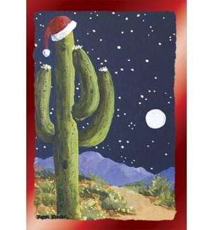 BOXEDCLASSIC/Cactus hat