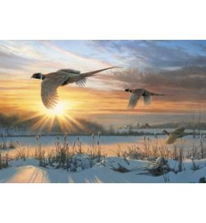 BOXEDCLASSIC/Pheasants