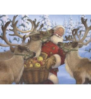 BOXEDNOTE/Nuzzeling Santa