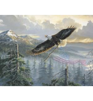 BOXEDNOTE/Eagle