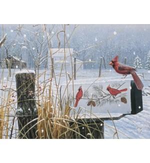 BOXEDNOTES/Cardinal