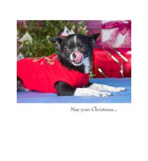XM/May your Christmas