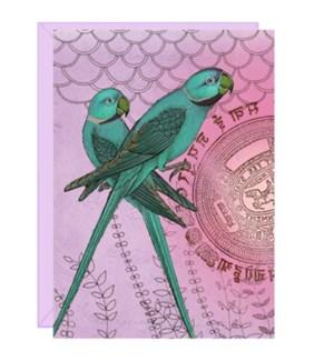 BL/Parrots