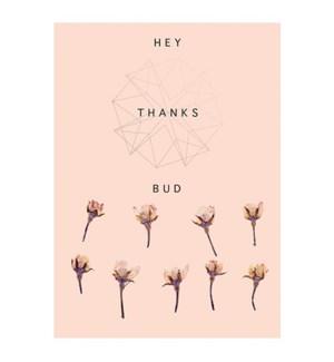 BL/Hey Bud
