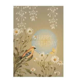 MINI/Birthday Daisy