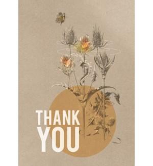 MINI/Daffodil Thanks