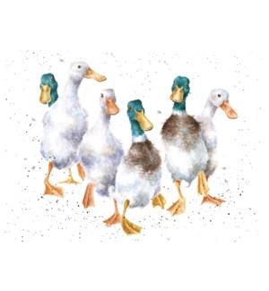 BL/Quackers