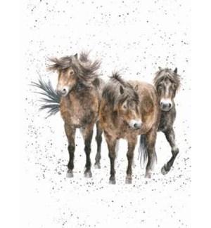 BL/Three Amigos