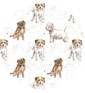 GIFTWRAP/The Terriers S Pack