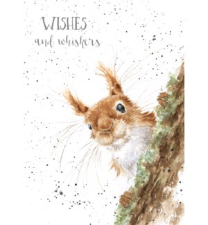 ED/Whiskers