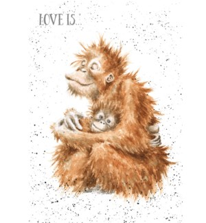 EDB/Love Is..