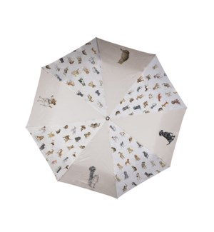 UMBRELLA/Cats And Dogs