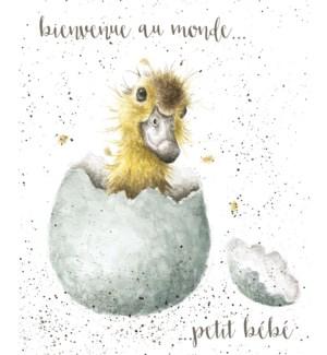 NB/Petit Bebe