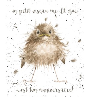 BD/Petit Oiseau