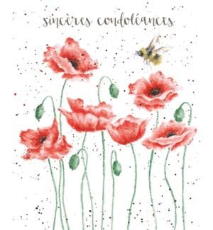 SY/Condolacances