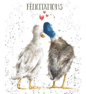 CO/Nos Faclicitations