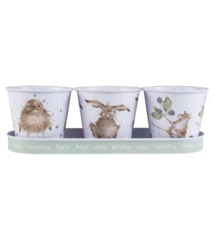 GARDEN/Herb Pots and Tray