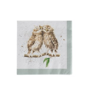 NAPKIN/What a Hoot Cocktail