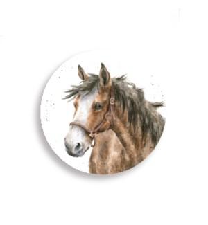 MAG/Horse