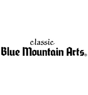 BLUE MOUNTAIN CLASSIC CONTROL