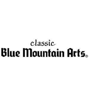 BLUE MOUNTAIN CLASSIC CONTROL