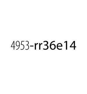 4953-0295